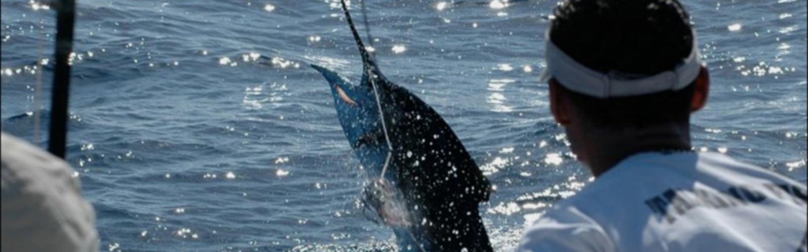 Tamarindo Fishing - Native's Way Costa Rica - Tamarindo Transfers and Tours
