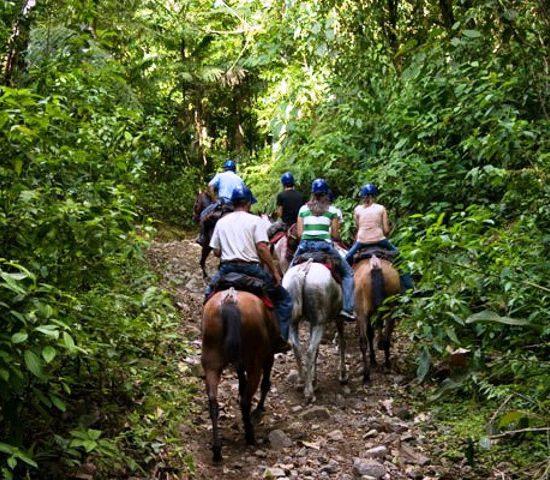 Best Horseback Tamarindo Tour - Native's Way Costa Rica - Tamarindo Tours & Transfers